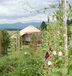Yurt and Garden