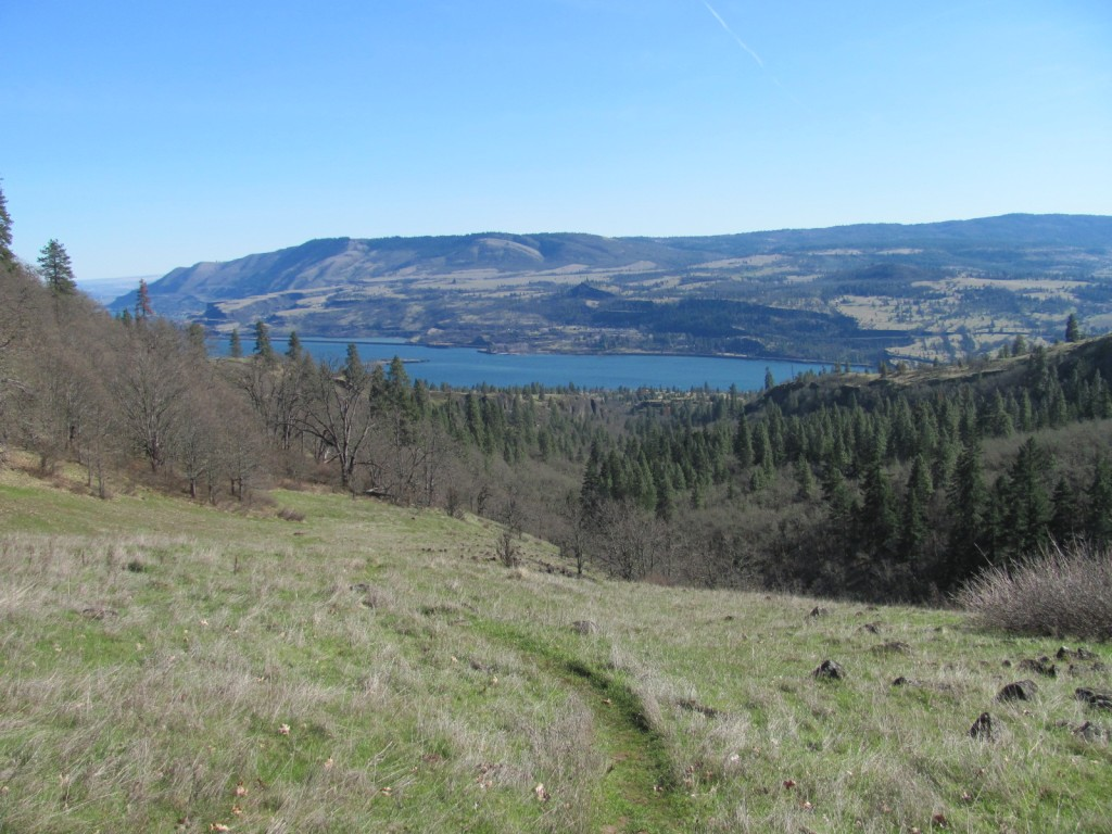 View of Columbia River