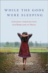 While the Gods Were Sleeping book cover