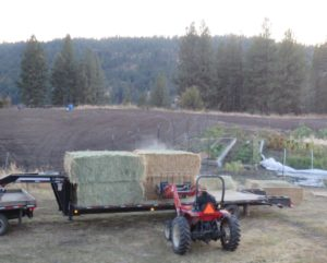 Truck Deliverying Hay