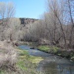 What I Learned About Stream Restoration on a Trip to Arizona